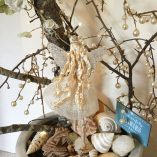 fairy princess tree blue sign sea shells back view natural