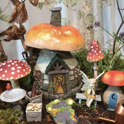 mushroom tavern
