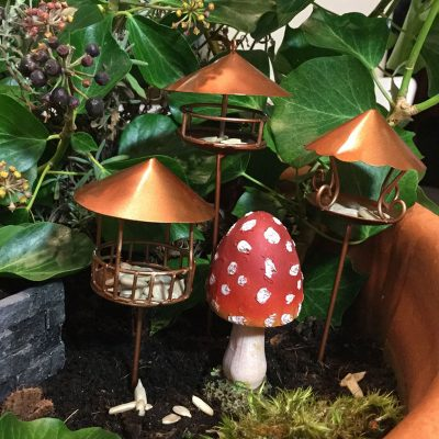 three bird house one toadstool