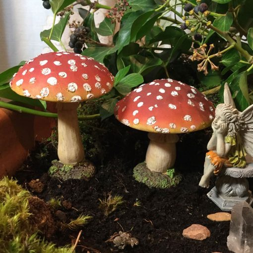 two toadstools and fairy sat on stone
