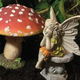 daydreaming fairy on stone