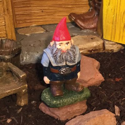 nick the gnome in the garden