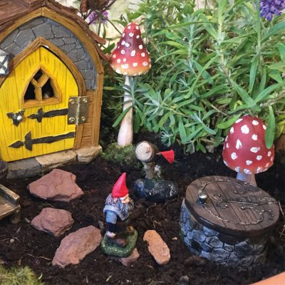 five quarters gnome hatch